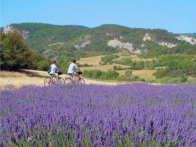 provence-centre-cycling