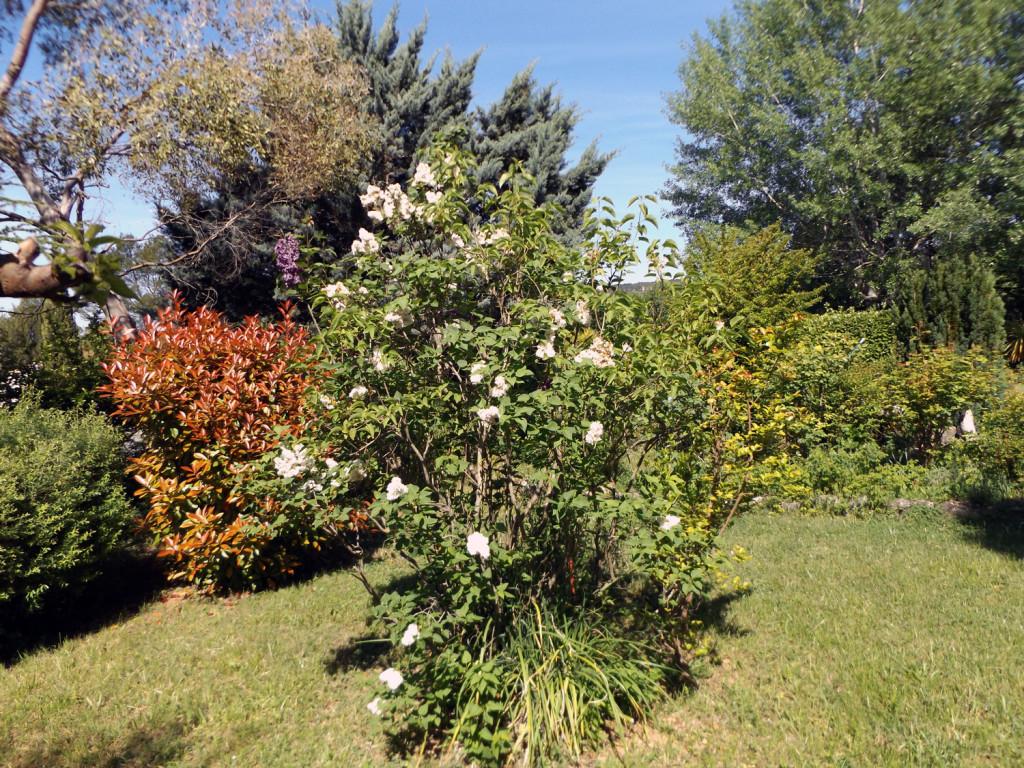 provence-centre-garden-3